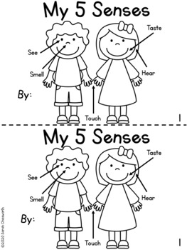 Five Senses Unit BASICS