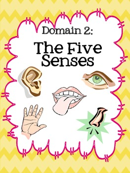 Five Senses Vocabulary Cards