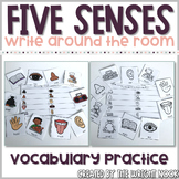 Five Senses Vocabulary Write The Room