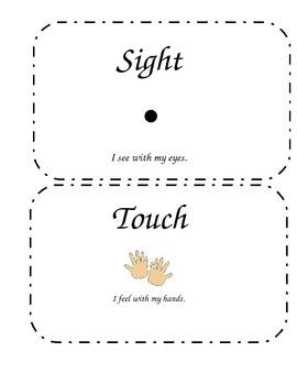 Five Senses Word Wall