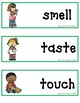 Five Senses Word Wall and Posters