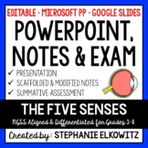 Five Senses and Sensory Processing PowerPoint, Notes & Exam