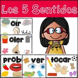 Five Senses in Spanish (Los cinco sentidos)