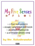 Five Senses pair talk poster, mini-book, flashcards and song printable