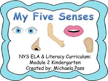 Five Senses:NYS Listening and Learning strand: Domain 2 Kindergarten