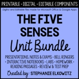 Five Senses and Sensory Processing Unit Bundle
