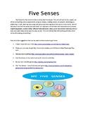 Five senses Parent Newsletter