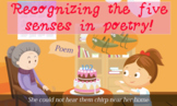 Five senses in poetry! Fun song and video teaching to common core standards!