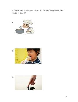 Fives Senses Test