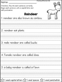 Fix It Up Sentences (December)