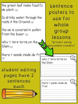 Fix-It! Writing Sentences (Plants & Seeds Edition)