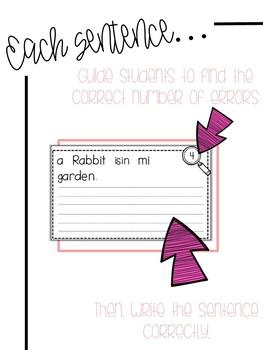 Fix-It! Writing Sentences (Spring Edition)