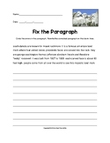 Fix the Paragraph Mount Rushmore Practice Worksheet (Grades 3-5)