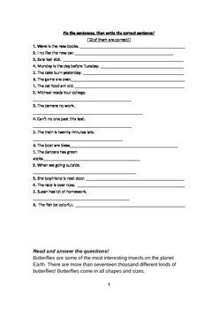 Fix the Sentences 2
