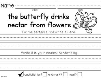 Fix the Sentences-Spring