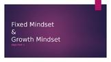 Fixed/Growth Mindset