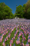 Flag Day, Memorial Day