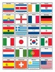 Flags of the World Soccer Cup Nations Brazil 2014