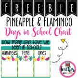 Flamingo Days in School Chart Freebie