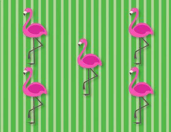 Flamingo Flash Subitizing