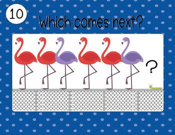 Flamingo Friends Patterns