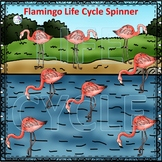 Flamingo (Life Cycle Spinner)