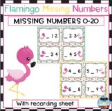 Flamingo Missing Numbers