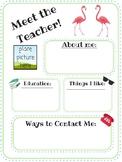 Flamingo Newsletter Templates FREEBIE