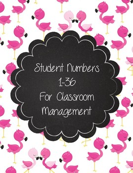 Flamingo Numbers 1-36 for Student Organization
