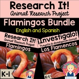 Flamingo Research Project and Activities in English and Spanish for K-1