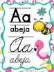 Flamingo Spanish ABC and Calendar (green frame)