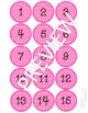 Flamingo Student Numbers 1 - 45 (Great for Floor Line Up Numbers)