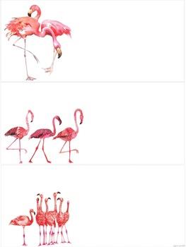 Flamingo Theme EDITABLE Schedule Cards