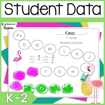 Flamingo Themed Data Binders