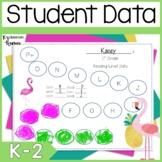 Flamingo Themed Data Binders