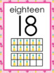 Flamingo Themed Number Poster 0-20 with 10 frame