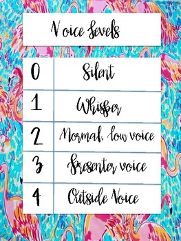 Flamingo Voice Levels Poster