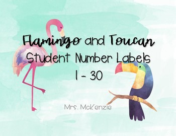 Flamingo and Toucan Student Number Labels