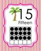 Flamingo Ten Frame Posters - 0 to 20