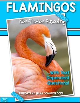 Informational Text {Flamingos} Close Reading & Text Dependent Questions