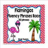 Flamingos Sight Word Fluency Phrases Race