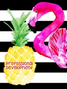 Flaminigo and Pineapple Binder Covers