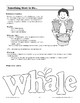 Flap Book - The Whale