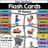 Flash Cards: Basic Vocabulary