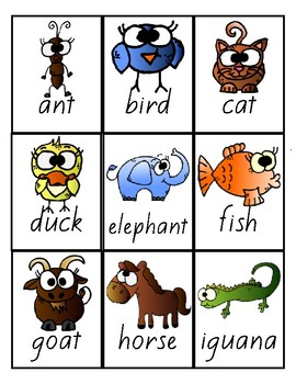 Flash Cards -Beginning Sounds