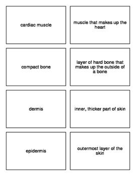 Flash Cards Covering Protection, Support and Locomotion for Biology II