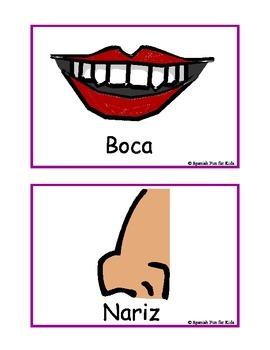 Flash Cards: Las partes de mi Cara (The parts of my face)