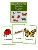 Flash Cards - Los insectos (insects)