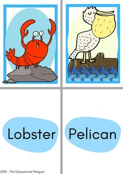 Flash Cards: Sea Animals