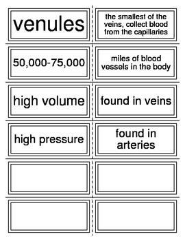 Flash Cards covering Blood Vessels